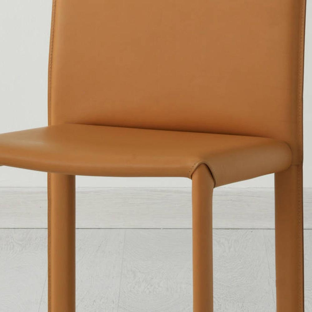 Elisa Dining Chair by Aria