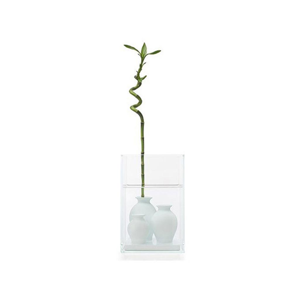 Atlantis Vase by Cappellini