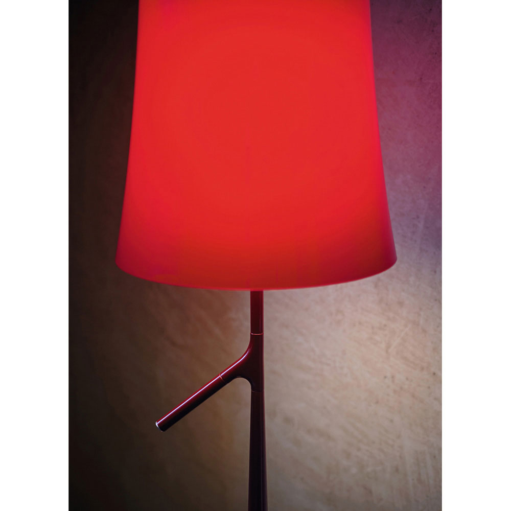 Birdie Lettura Floor Lamp by Foscarini