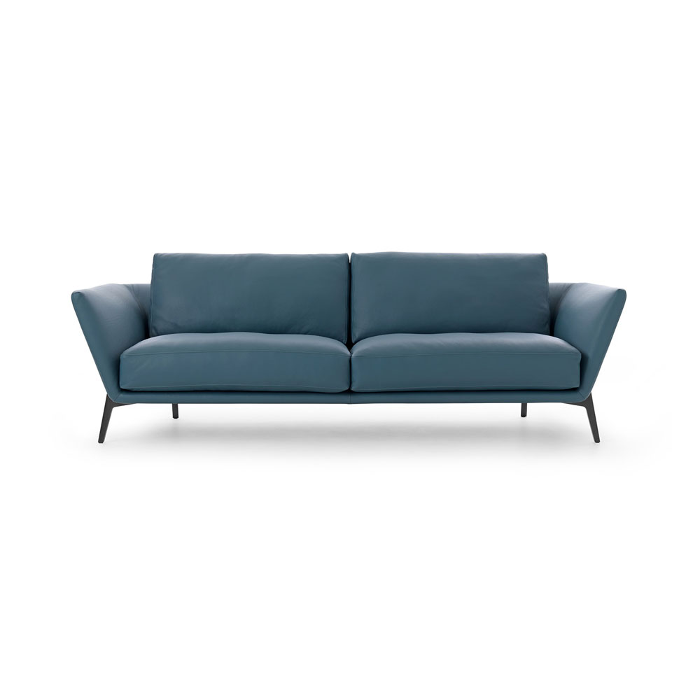 Rego Sofa by Leolux