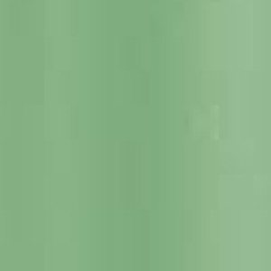 Sage-Green-Textured-Matt-Finish